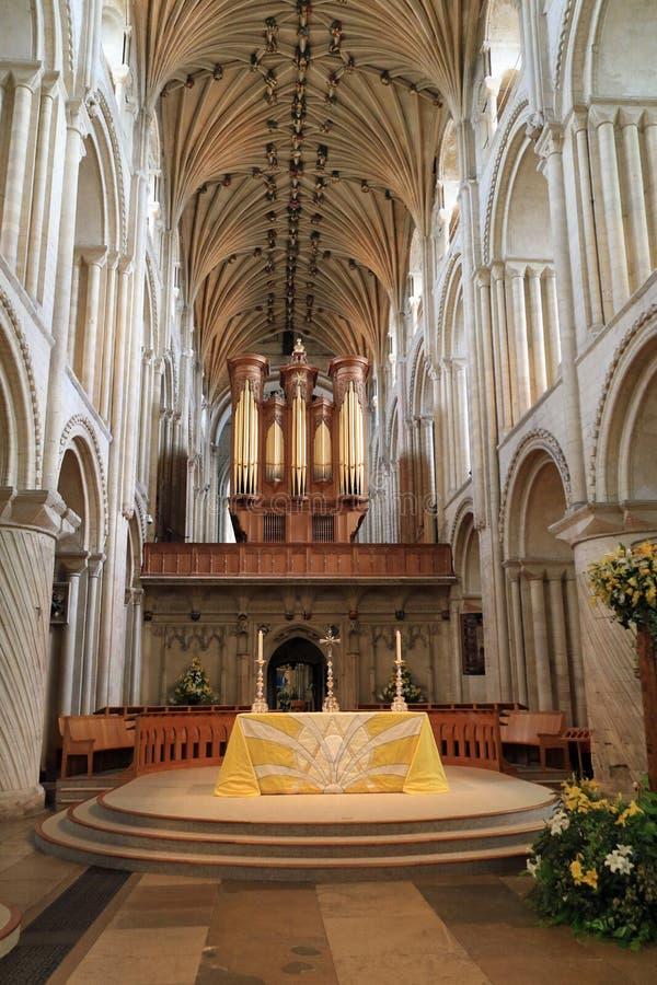 Das Kirchenschiff - Norwich-Kathedrale lizenzfreie stockfotografie