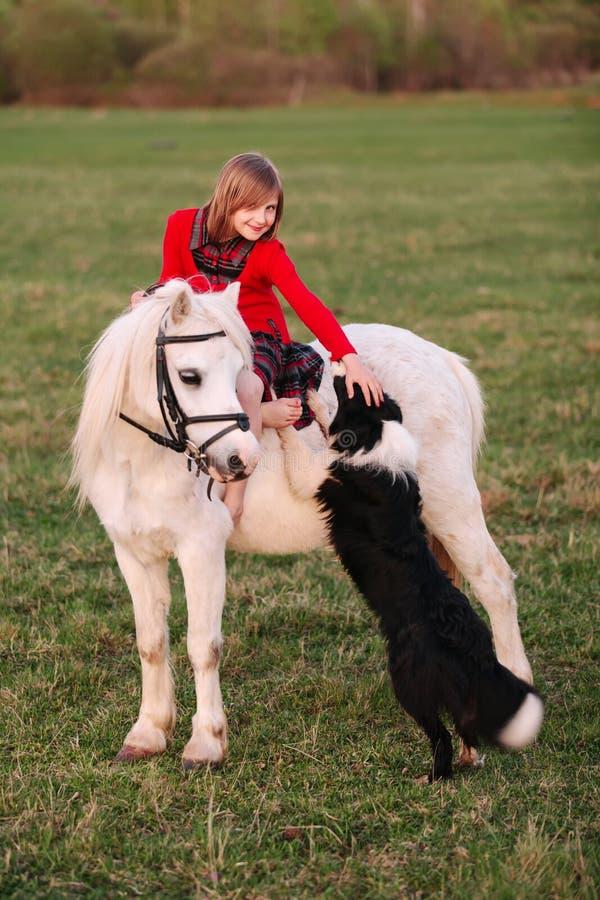 Das kleine Kind, das auf einem weißen Pony sitzt, berührt die Hand und einen Hund, welche die Kamera betrachten stockfoto
