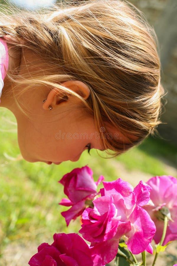 Das kleine Mädchen, das ein rosafarbenes riecht, stieg lizenzfreie stockfotos
