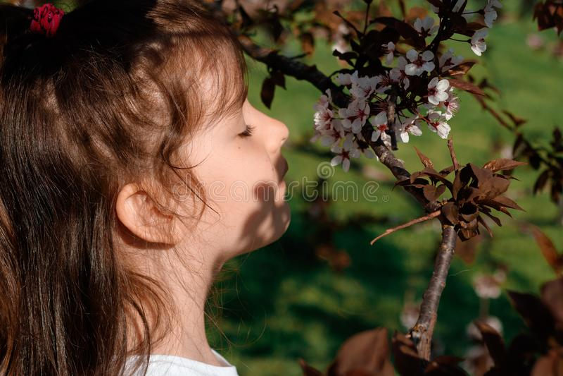 Das kleine Mädchen in einem blühenden Obstgarten stockbilder