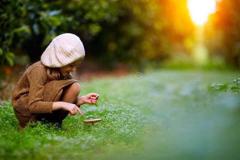 Das kleine Mädchen im Wald und in den Giftpilzen stockfotografie