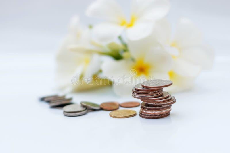 Das Konzept des Rettungsgeldes auf dem weißen Boden, Hintergrund von Blumen lizenzfreies stockfoto