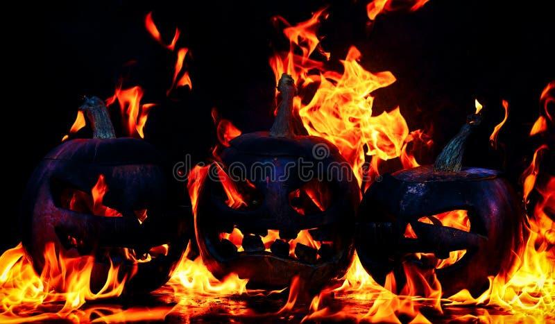Das Konzept von Halloween Schlechte schreckliche Kürbise des Baums brennt stockfoto