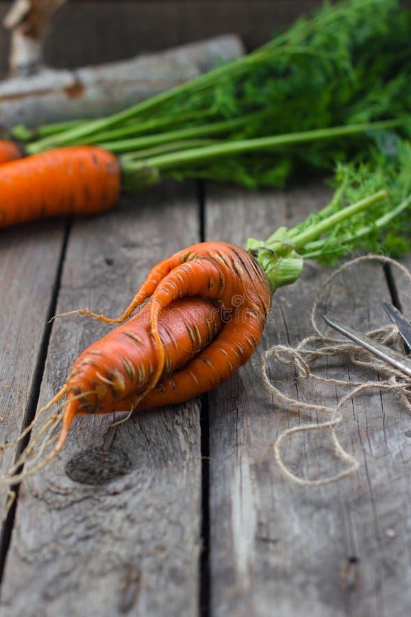Das Konzept von Karotten der gesunden Ernährung stockfotografie