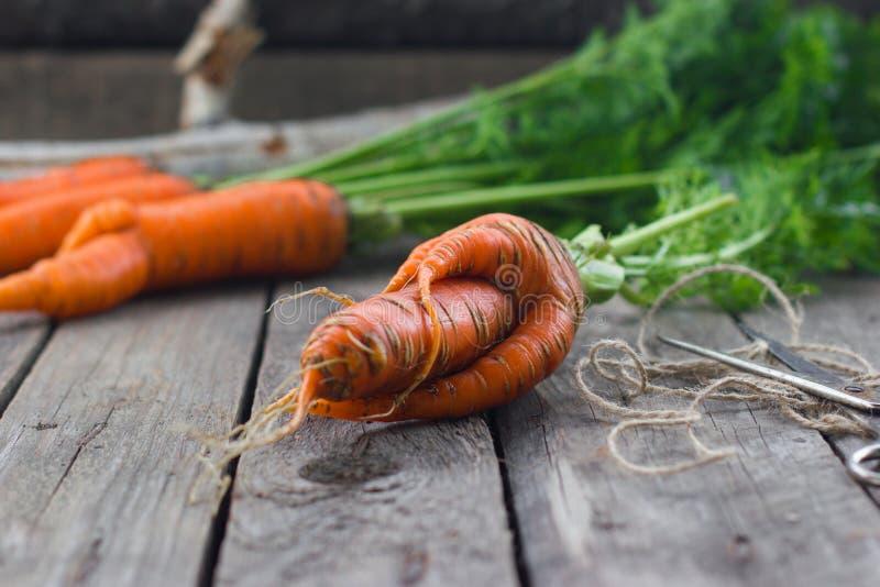 Das Konzept von Karotten der gesunden Ernährung lizenzfreie stockfotografie