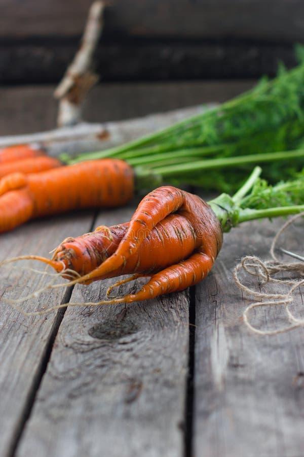 Das Konzept von Karotten der gesunden Ernährung lizenzfreie stockbilder