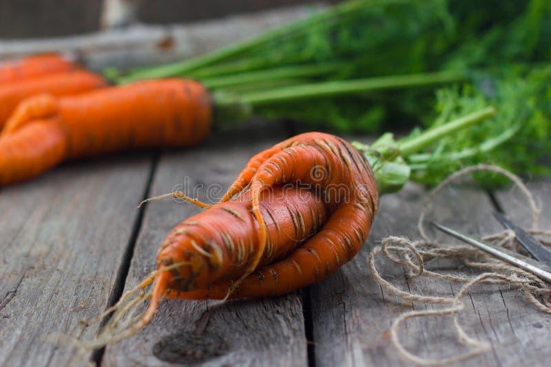 Das Konzept von Karotten der gesunden Ernährung stockfoto