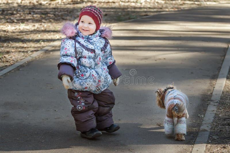 Das lächelnde Kleinkindmädchen, das mit ihrem Hunde- Begleiter geht, kleidete in Blau gestricktem Mantel im Park des kühlen Wette stockbild