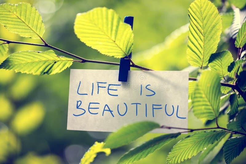 Das Leben ist schön stockfotos