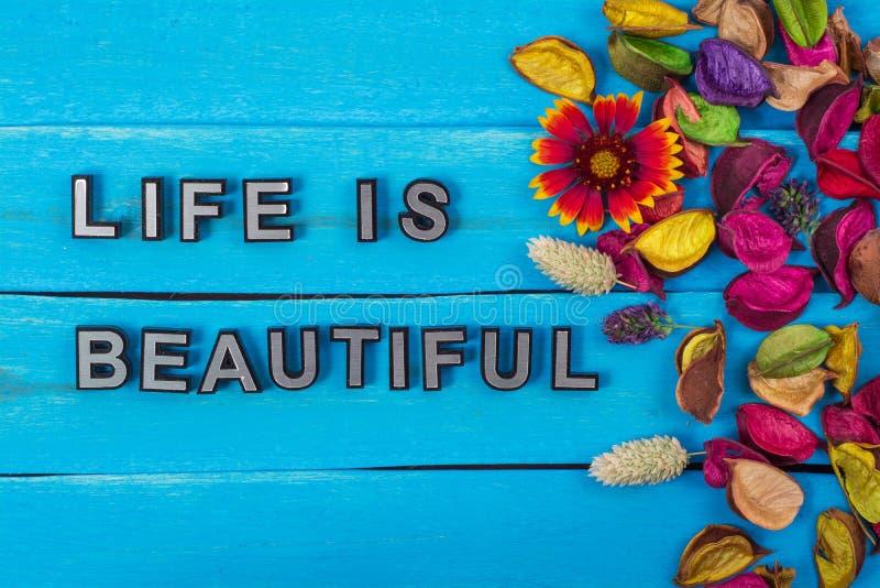 Das Leben ist schöner Text auf Purpleheart mit Blume lizenzfreies stockfoto