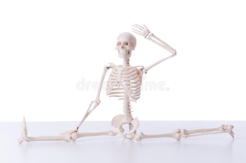 Das lustige Skelett lokalisiert auf Weiß lizenzfreies stockfoto