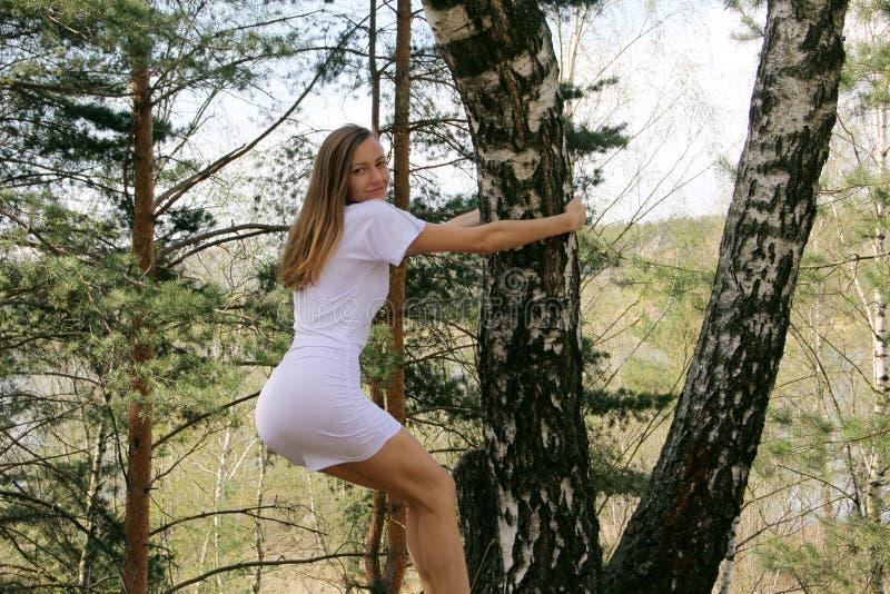 Das Mädchen im weißen Kleid nahe der Birke lizenzfreie stockfotografie