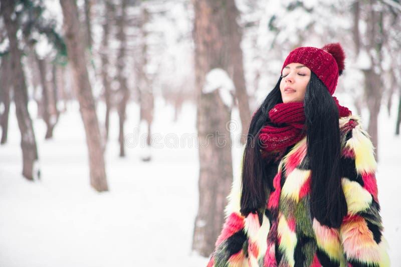 Das Mädchen atmt einen träumerischen Atem durch die frische eisige Luft ein lizenzfreies stockfoto