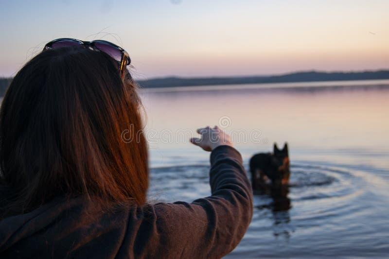 Das Mädchen auf dem See, der mit einem Hund spielt stockbilder