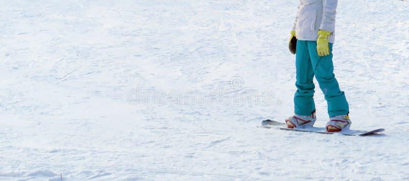 Das Mädchen auf dem Snowboard auf dem Schnee im hellen Trainingsnazug stockfoto