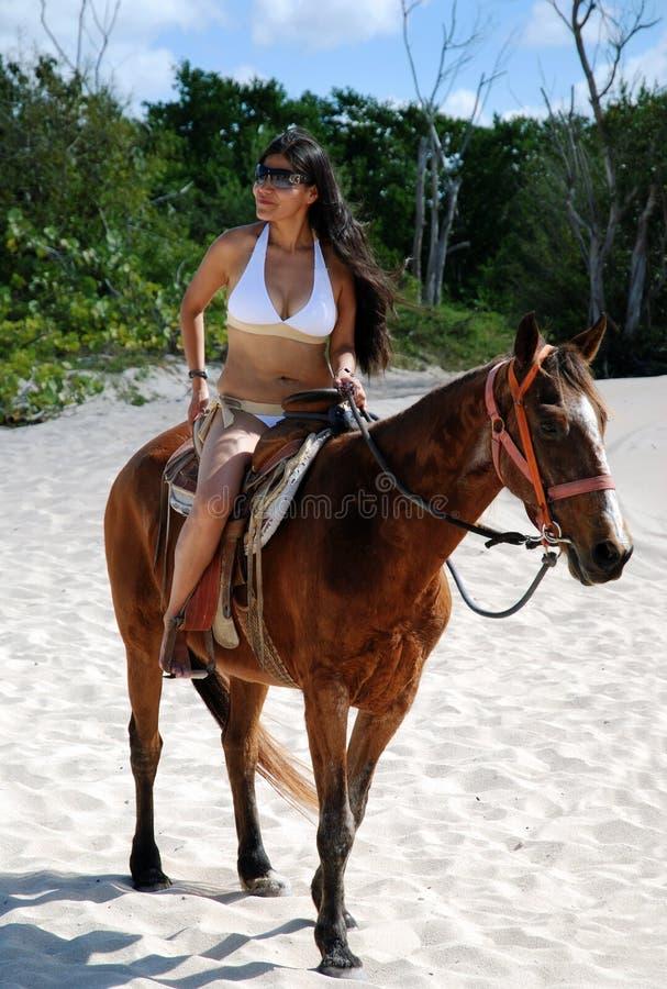 Das Mädchen auf einem Pferd lizenzfreie stockbilder