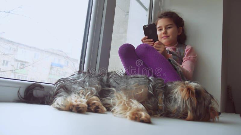 Das Mädchen, das jugendlich ist, das Spiel für Smartphone- und Schoßhundnetz online spielend, schläft, sitzend auf Fensterbrettfe stockfotografie