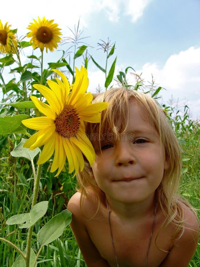 Das Mädchen in den Sonnenblumen lizenzfreies stockfoto