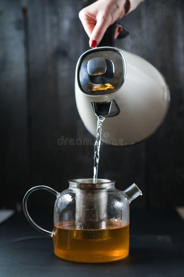 Das Mädchen gießt Wasser in die Teekanne lizenzfreies stockfoto