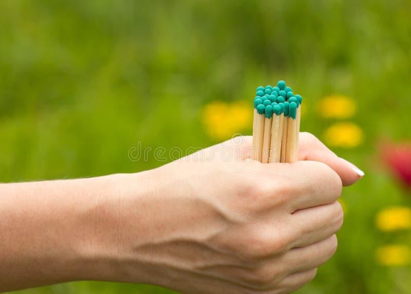 Das Mädchen hält einiges Match in ihrer Hand auf einem unscharfen Hintergrund, Nahaufnahme lizenzfreies stockfoto