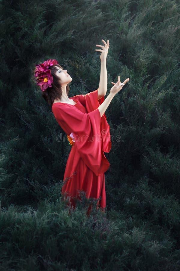 Das Mädchen im roten Kleid. lizenzfreie stockfotos