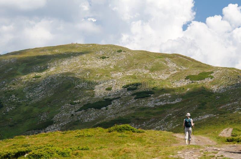 Das Mädchen nimmt an dem Wandern teil stockbilder
