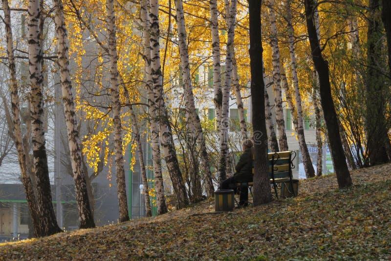 Das Mädchen sitzt allein auf einer Bank auf dem Abhang im alten Stadtpark stockfotografie