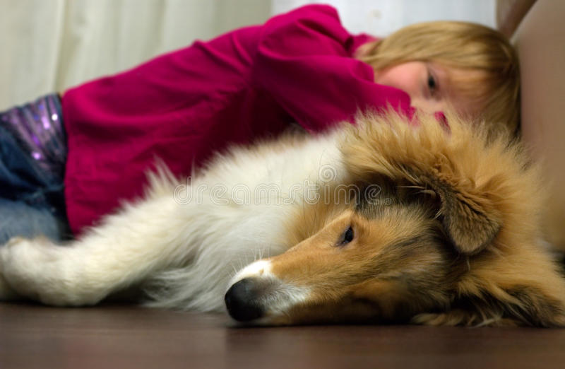 Das Mädchen und der Hund stockbilder