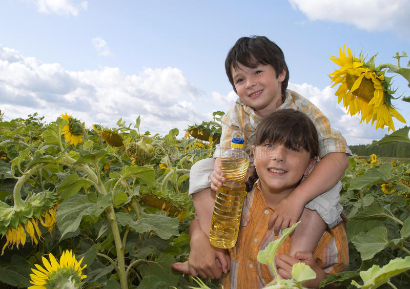 Das Mädchen und der Junge mit Sonnenblume lizenzfreie stockfotografie