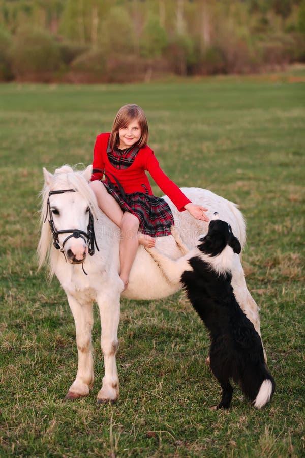 Das Mädchenkind sitzt auf einem Pony mit seiner Hand und berührte den Hund stockfoto