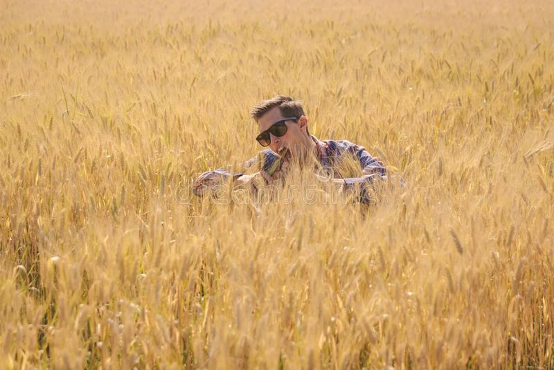 Das Mannscherzen umgab durch ein Weizenfeld lizenzfreies stockfoto