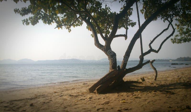 Das Meer und der helle Sonnenschein lizenzfreie stockfotografie