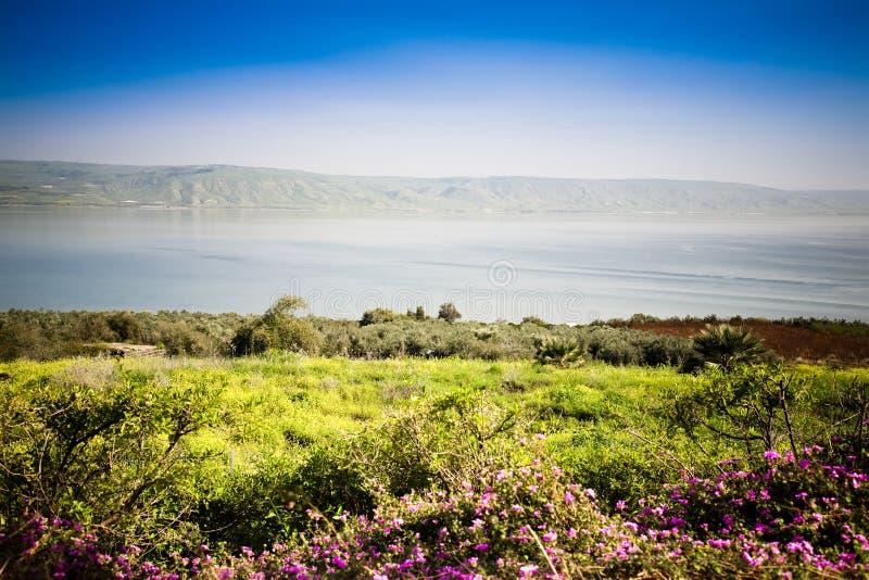 Das Meer von Galiläa stockfotografie