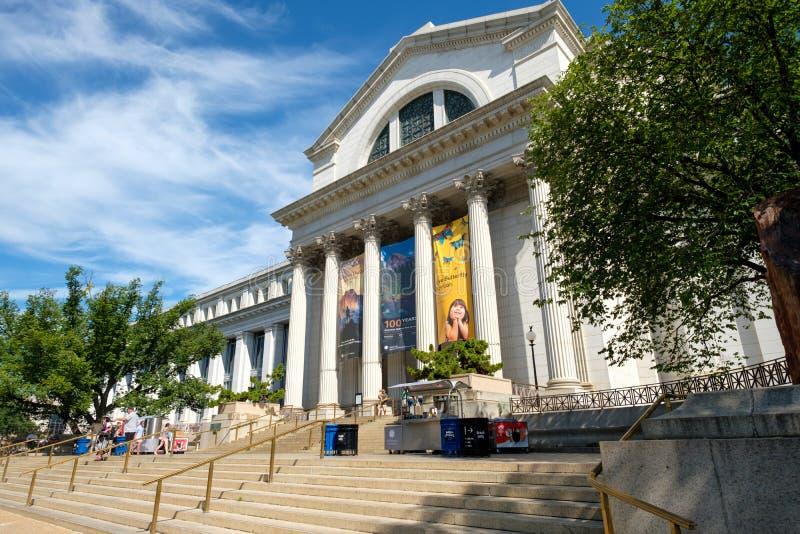 Das Nationalmuseum der Naturgeschichte in Washington D C lizenzfreie stockfotos