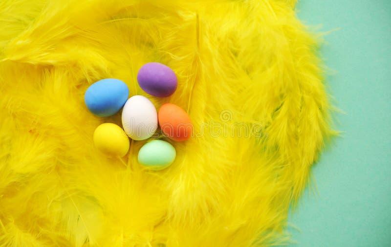 Das Nest der Feder mit kleine bunte Eier stockfoto