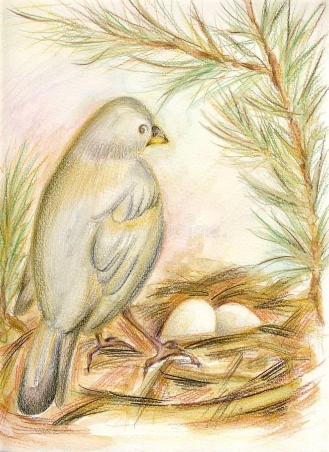 Das Nest des Vogels vektor abbildung