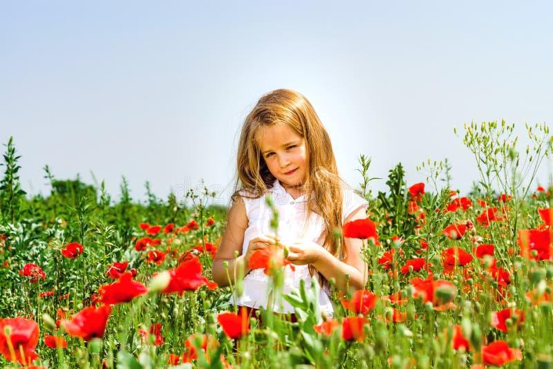 Das nette kleine Mädchen, das in den roten Mohnblumen spielt, fangen Sommertag, Schönheit auf stockbild