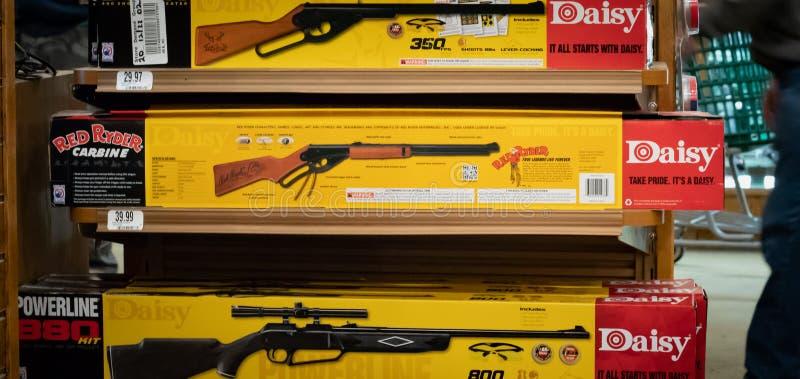 Das offizielle rote Ryder-BB Gewehr durch Gänseblümchen/illustrativen Leitartikel stockbilder