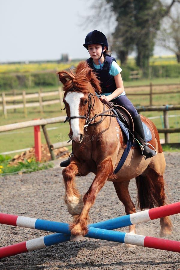 Das Pferden-Springen lizenzfreies stockbild