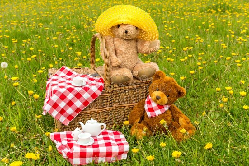 Das Picknick des Teddyb?ren im Sommer mit hellem gelbem L?wenzahn lizenzfreies stockbild