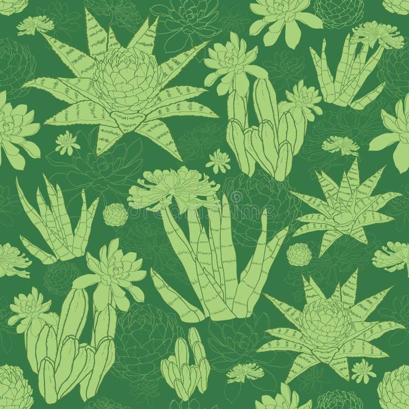 Das plantas carnudas verdes de Lineart do vetor teste padrão sem emenda ilustração stock
