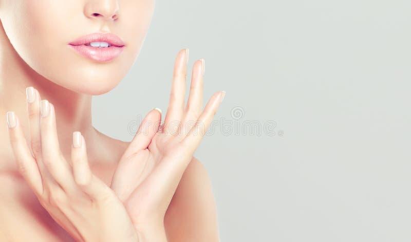 Das Porträt der jungen Frau mit sauberer frischer Haut und weiche, empfindlich bilden stockfotos