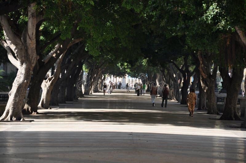 Das Prado (Paseo de Marti), Havana, Kuba lizenzfreie stockfotografie