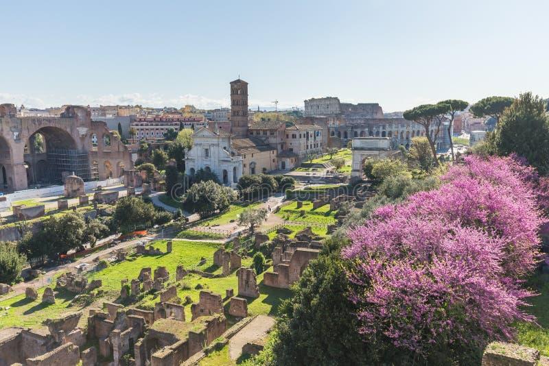 Das römische Forum in Rom, Italien lizenzfreie stockfotografie