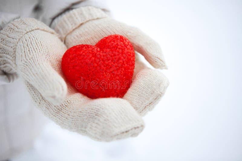 Das rote strukturierte Herz liegt auf den Palmen Valentinsgruß `s Tag stockbild