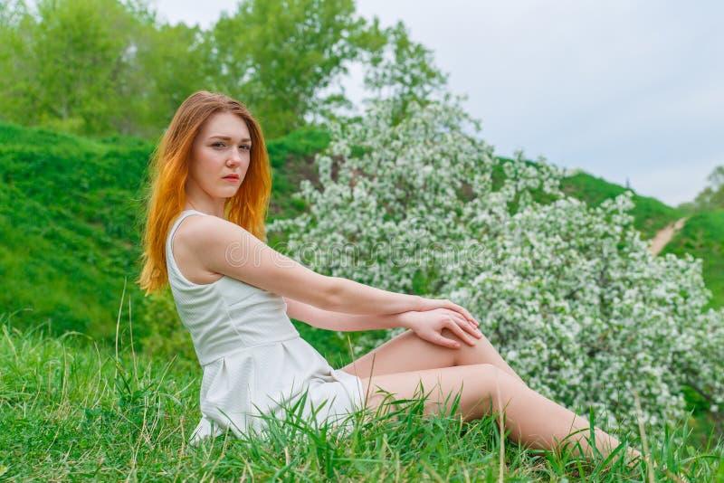 Das rothaarige Mädchen in einem weißen Kleid, das auf grünem Gras auf einem Hintergrund eines blühenden Apfelbaums sitzt Mädchenf stockbild