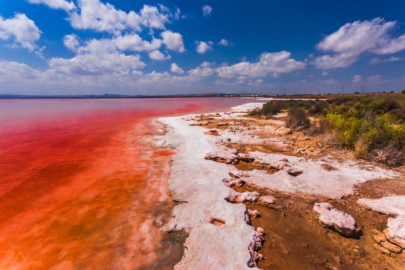 Das salzige Ufer des Laguna Salada de Torrevieja spanien lizenzfreie stockfotografie