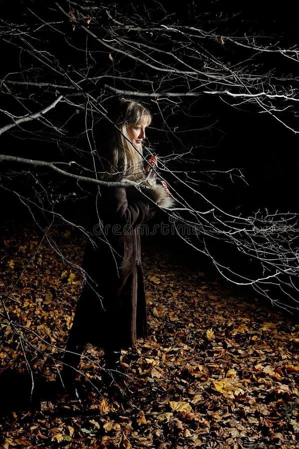 Das schöne Mädchen im dunklen Herbstholz stockbild