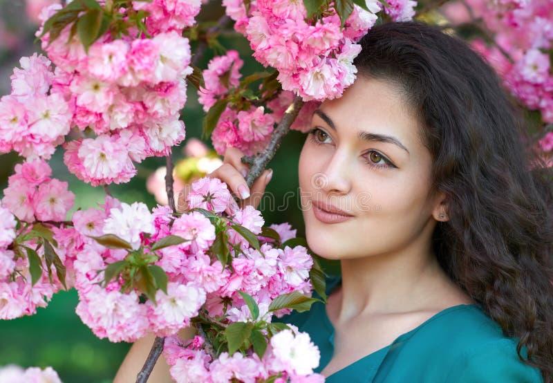 Das schöne Mädchen, das nahe rosa Kirschblüte aufwirft, blüht als Hintergrund, Gesichtsnahaufnahme, Frühlingslandschaft stockfotos