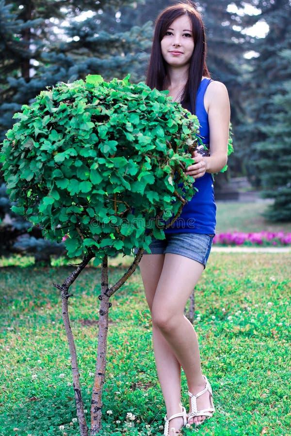 Das schöne Mädchen in voller Länge im Park nahe dekorativen Büschen stockbilder